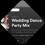 Seattle Wedding DJ mix Flux VJ